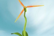 wind-energy-degradable