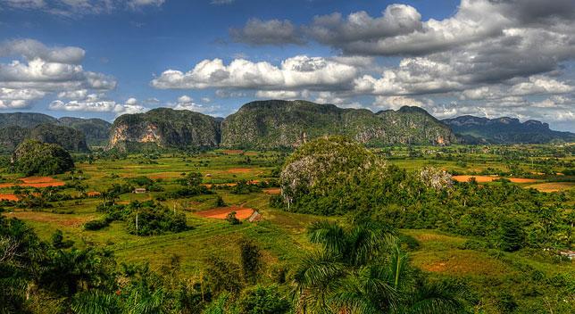 Долина Виньялес в Кубе является домом для множества эндемичных видов растений и животных.