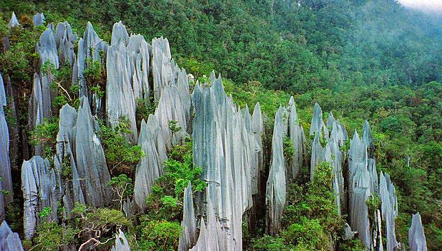 Вершины пиков из известняка в Национальном парке Мулу, Борнео.