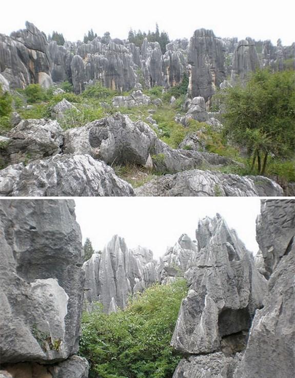 Каменный лес, Китай