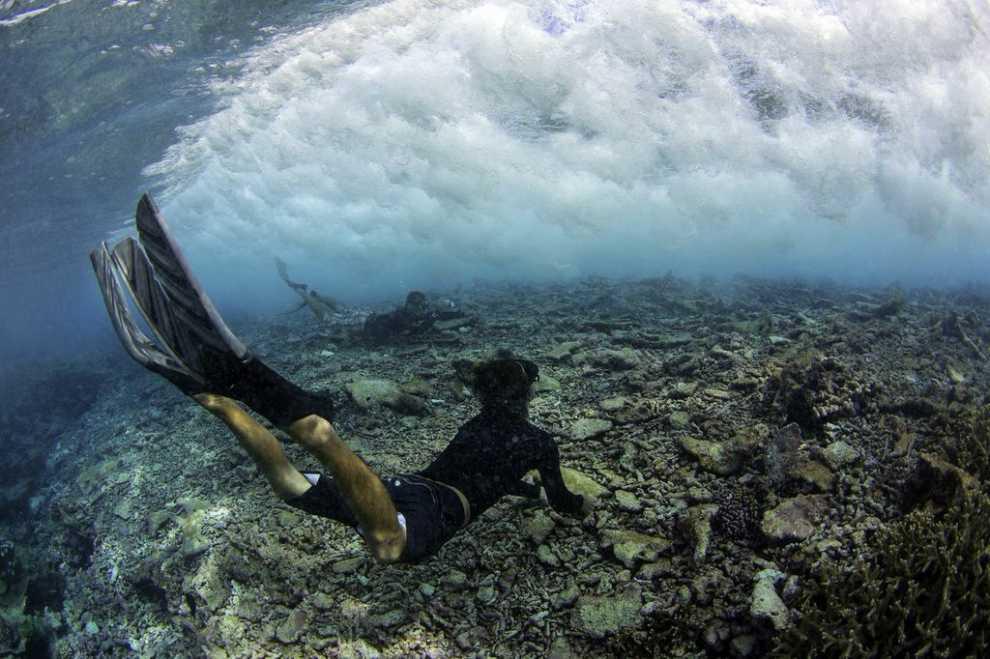 Как коралловые рифы помогут нам перенести изменения климата