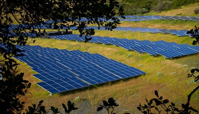 Солнечные электростанции для биоразнообразия