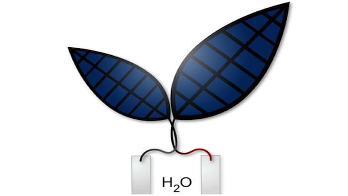 Фотосинтез бионического листа теперь в 10 раз эффективнее, чем натурального