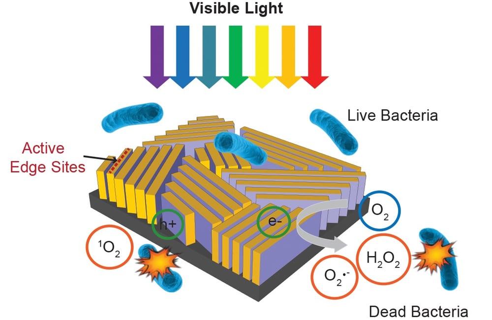 """""""Черный прямоугольник"""" и солнечная энергия для очистки воды от бактерий"""