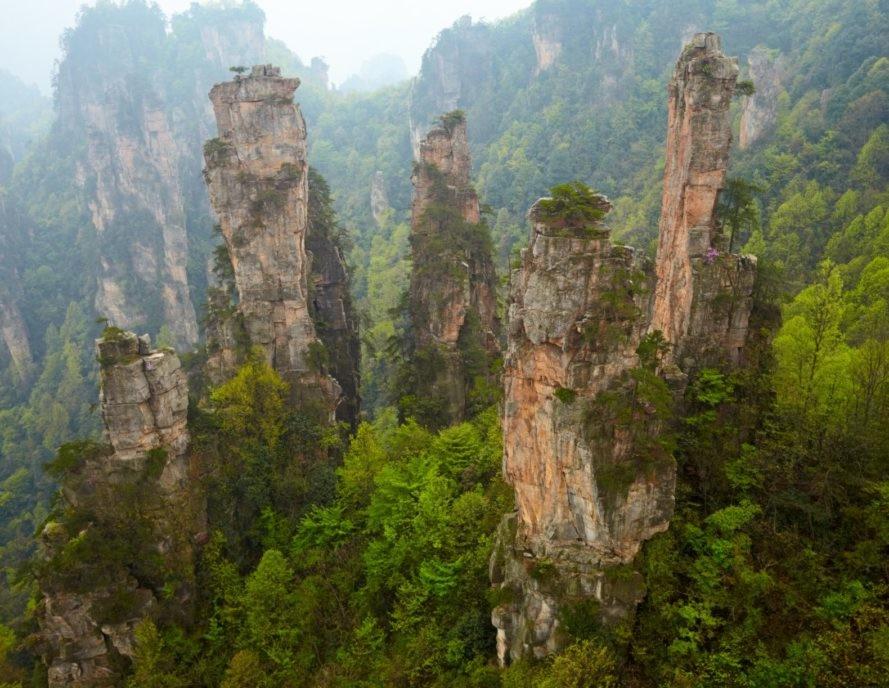 Китай высаживает новый лес размером с Ирландию