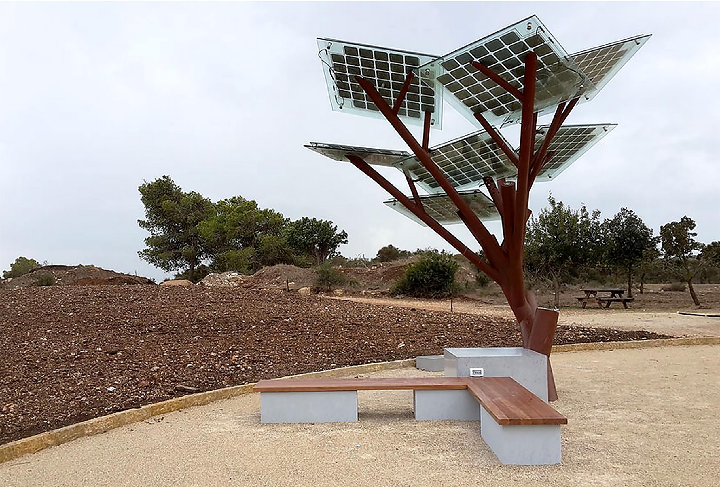 Солнечное дерево в Израиле. Facepla.net последние новости экологии
