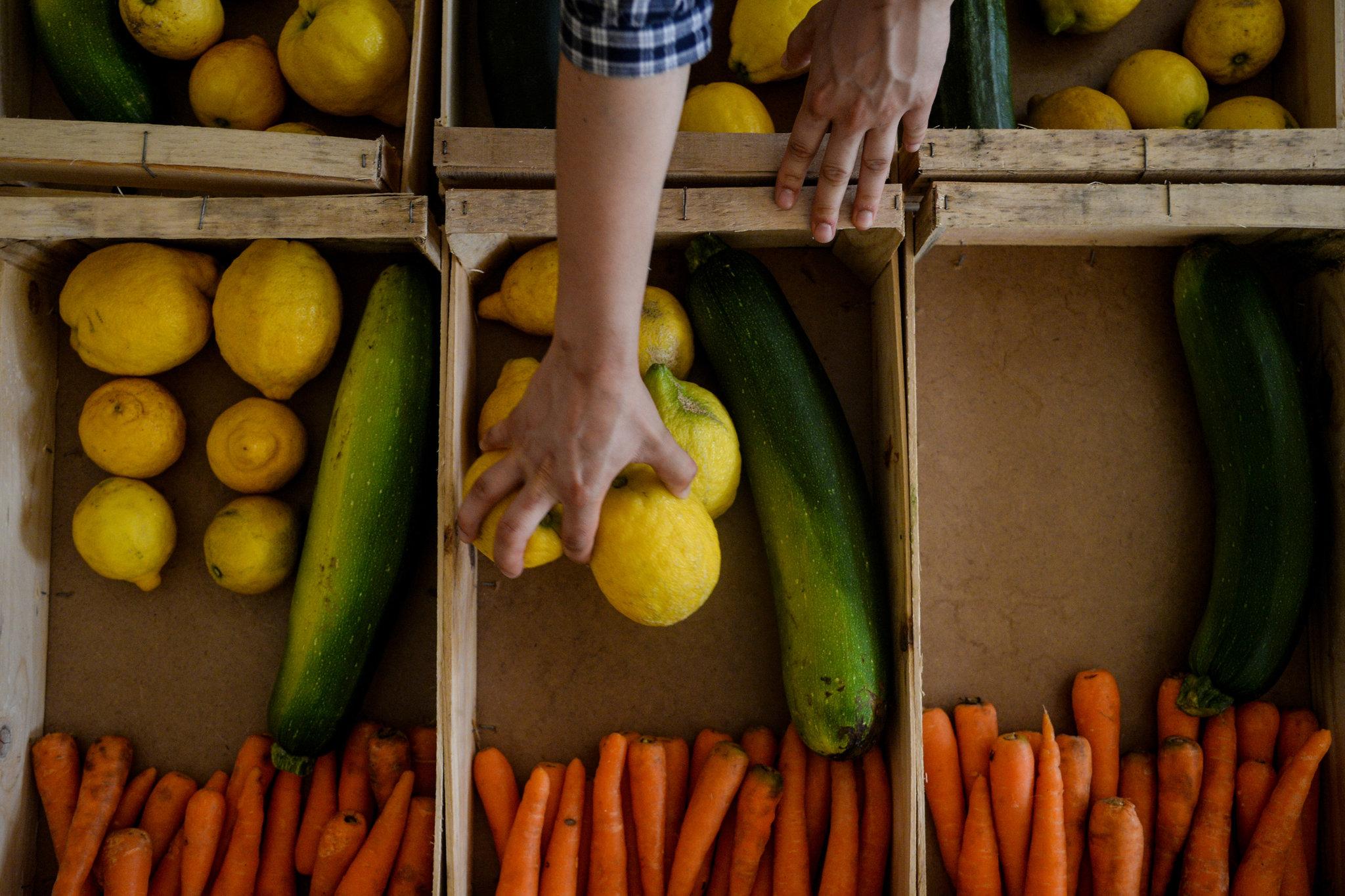 Фрукты и овощи, которыми перебирает Европа, спасает от свалки молодая компания