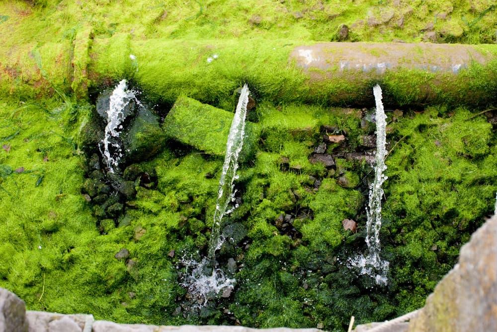Регистратор шума слышит протечки и экономит воду. Facepla.net последние новости экологии
