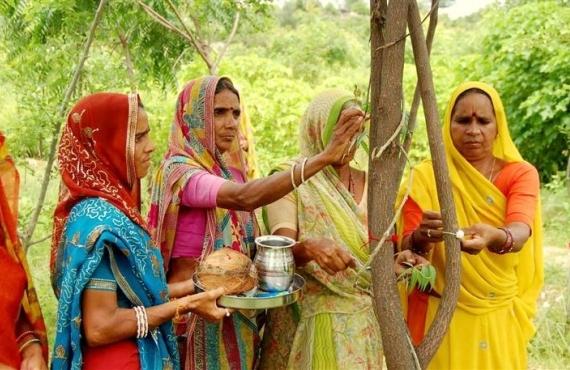 Эко-феминизм в Индии