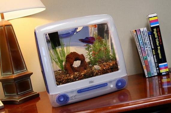 iMacQuarium: не забыли покормить рыбок?