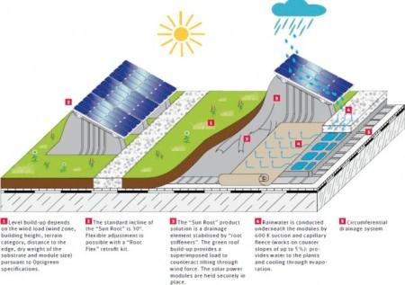 Технология Green Roof