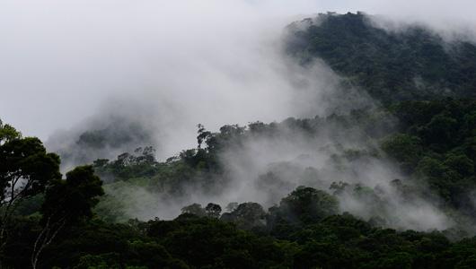 Национальный парк Дарьен