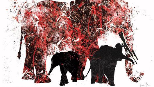 Да-да, слонов продолжают убивать ради бивней!