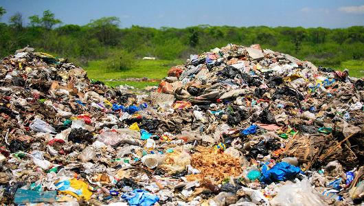 «Мусорология»: как повседневный мусор в итоге становится нашей едой