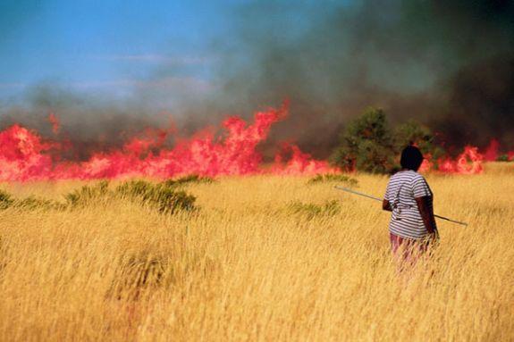 Традиционное выжигание небольших участков местности способствует созданию сети открытых участков, предотвращающих разрушительное распространение пожаров в сухие сезоны.