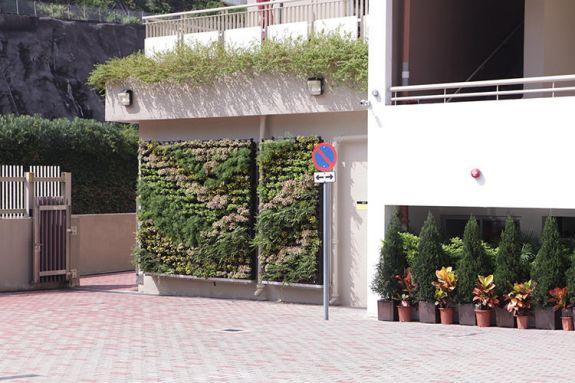 Самая зеленая школа в мире - малобюджетная школа в Гонконге