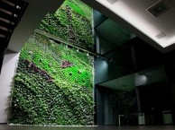 office-eco-garden