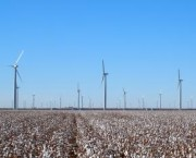 worlds-largest-wind-farm-completed-in-texas