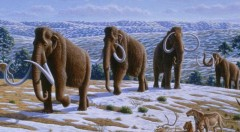 mammoth-extinction-warm-earth