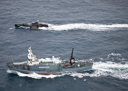 Sea Shepherd Gojira