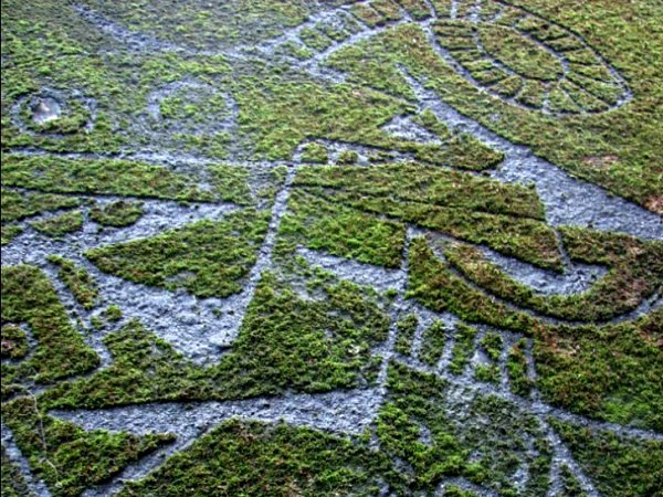 graffiti-on-moss-4
