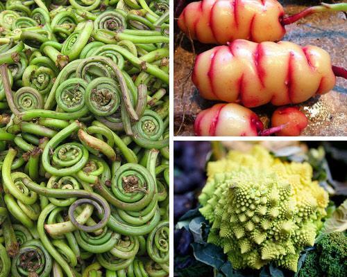 14 вариантов уникальной и экзотической зелени