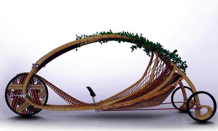 06_ajiro-bamboo-vehicle-1